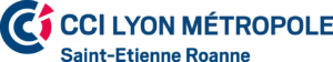 De Toute Beauté logo CCI Lyon